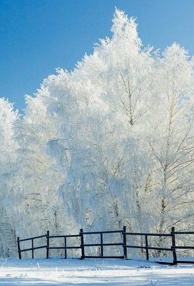 calendar ortodox ianuarie 2019