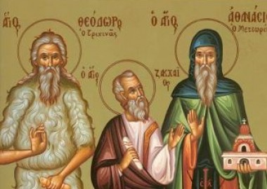 Icoana Sfantul Teodor Trihina Teotim