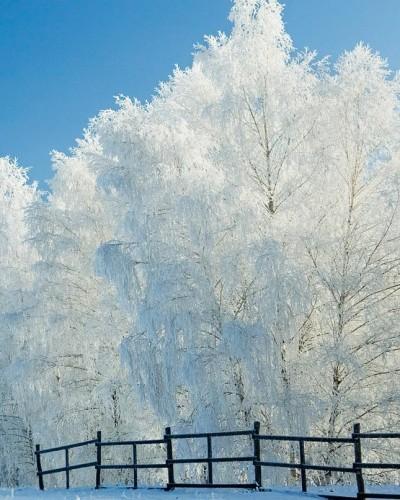 peisaj de iarna ianuarie